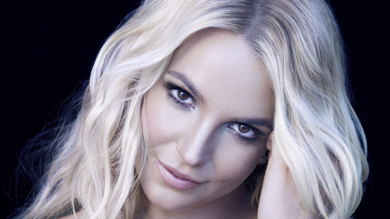 Britney Spears posing from a promotional campaign for her album 'Britney Jean'