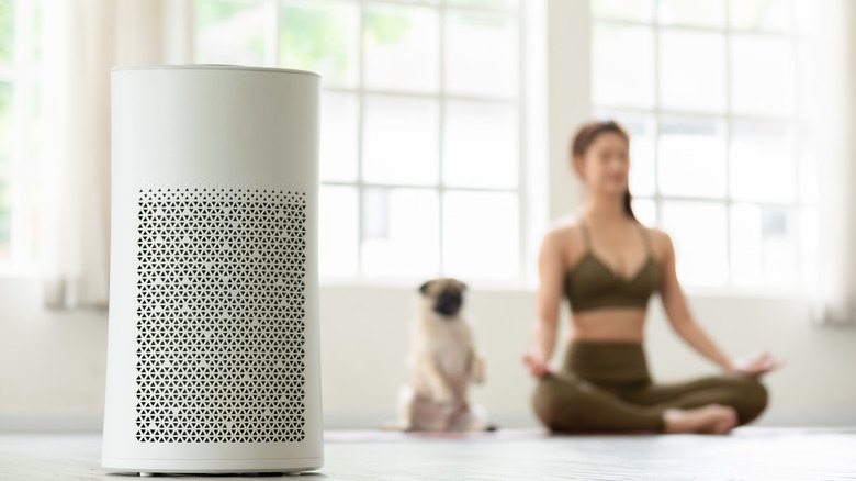 A woman and dog sitting with an air purifier