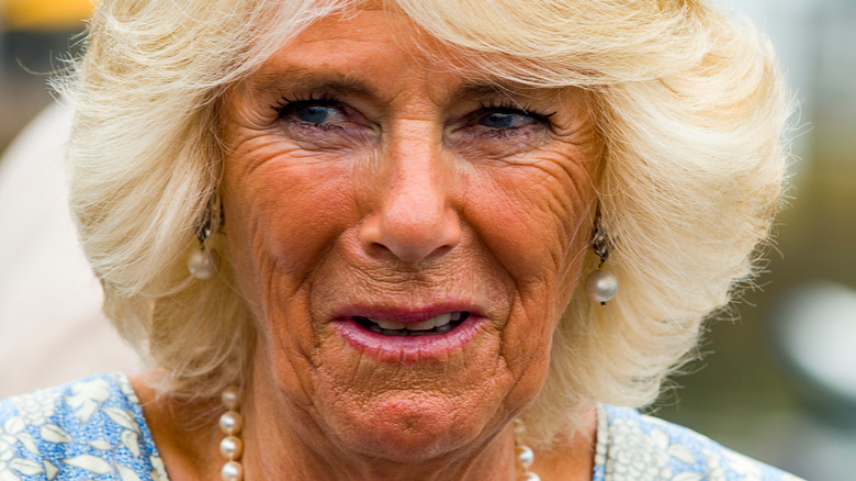 Camilla Parker Bowles making a face