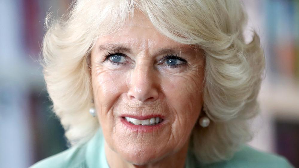 Camilla Parker Bowles hair