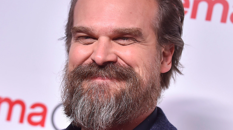 David Harbour smiles on the red carpet