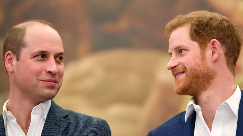 Prince William and Prince Harry smiling at each other