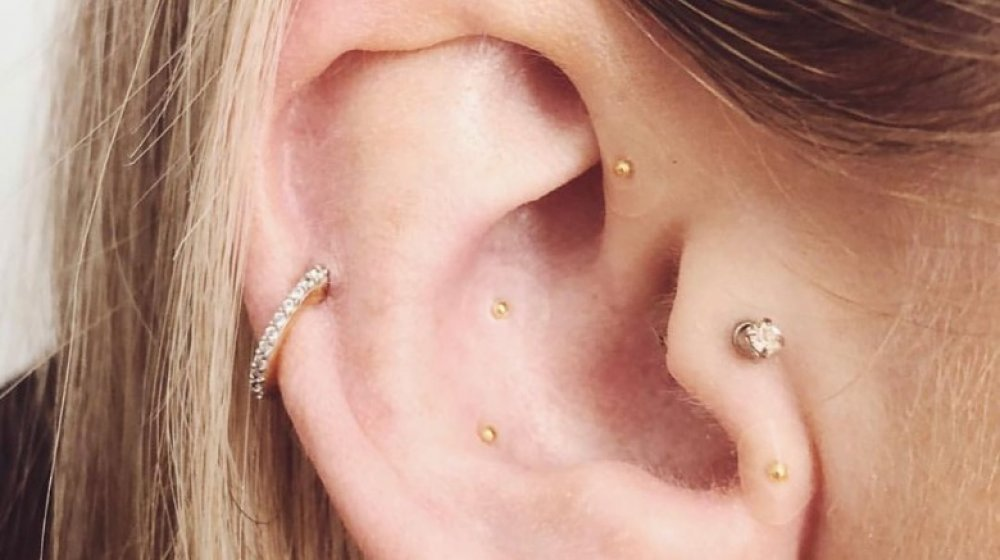 Ear studded with seeds