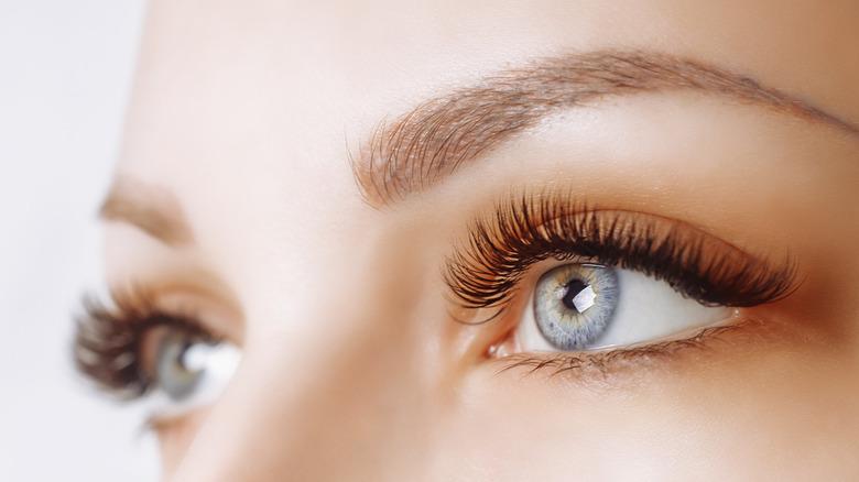 close up eyelash extensions