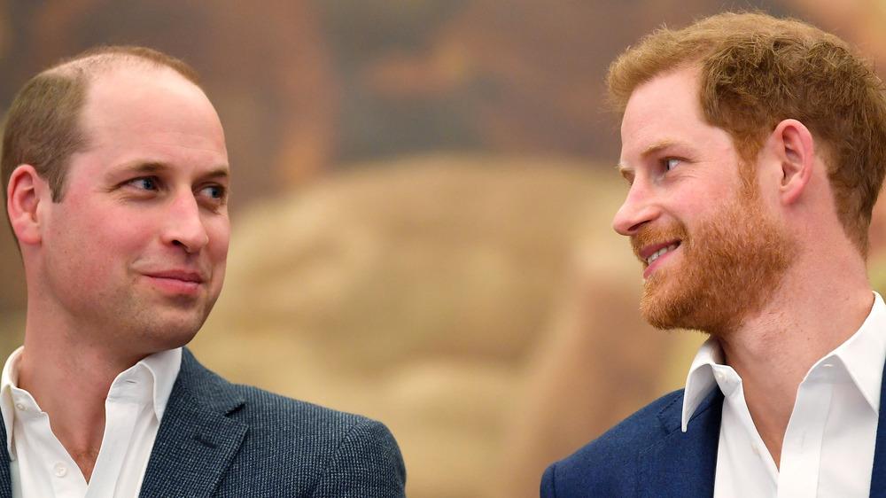 Harry and William exchange looks