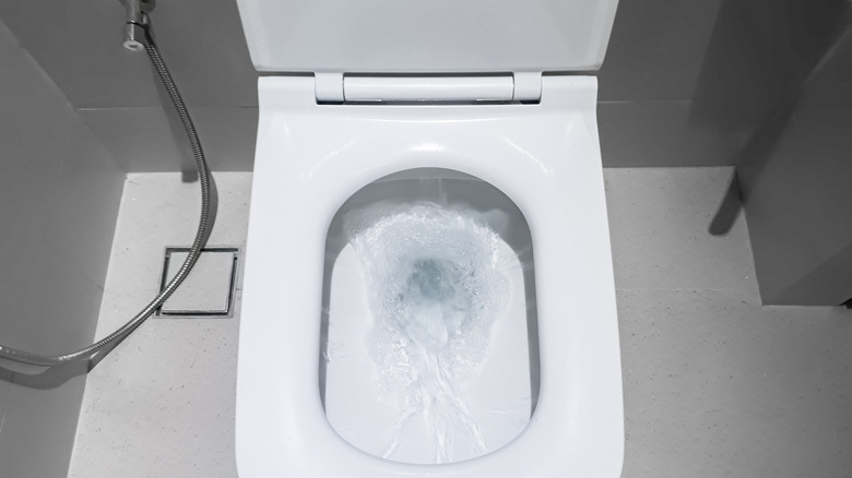 Flushing toilet with the seat up
