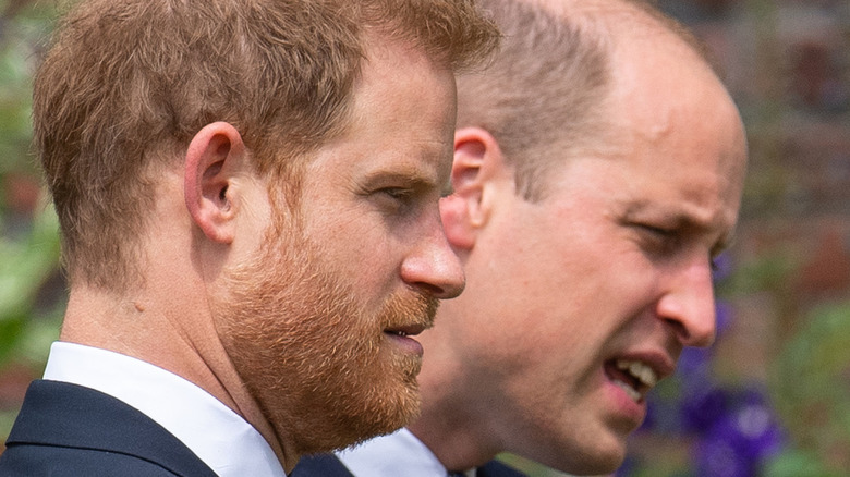 Princes William and Harry at Diana's statue unveiling