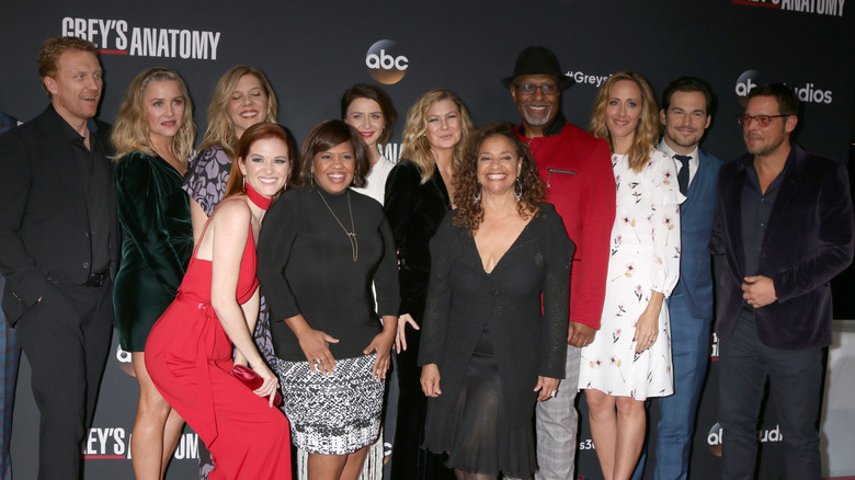 """cast of """"Grey's Anatomy"""" from 2017"""