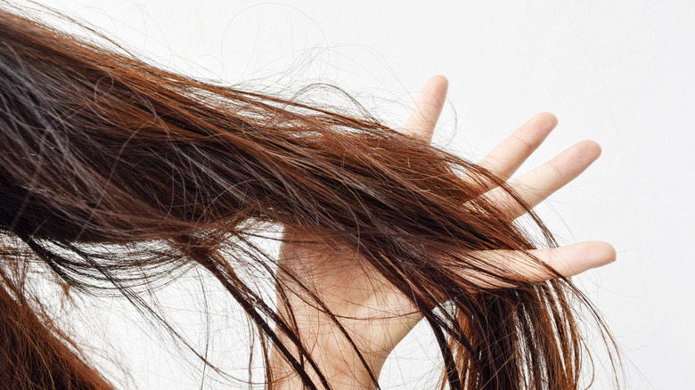 hair being detangled with hand