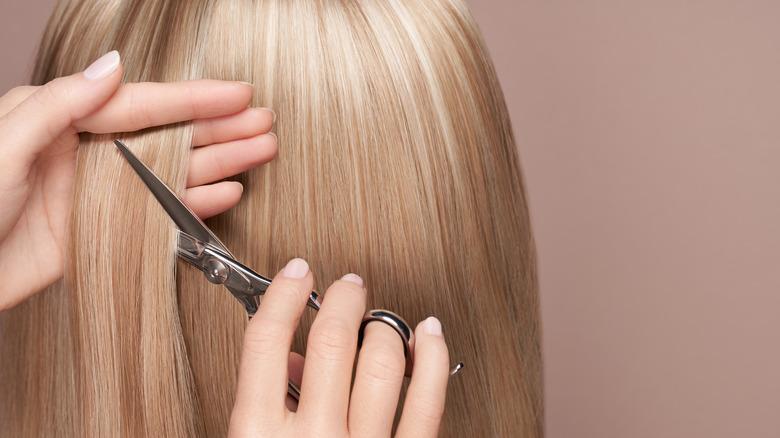A stylist cutting straight blonde hair