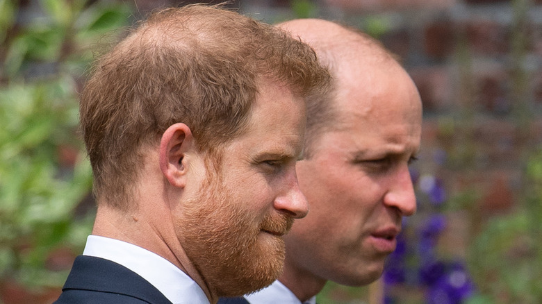 Harry and William at the statue unveiling