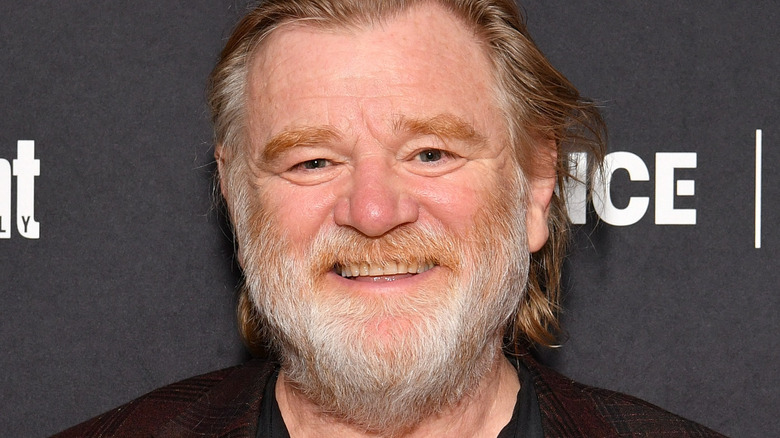 Brendan Gleeson smiles at an event