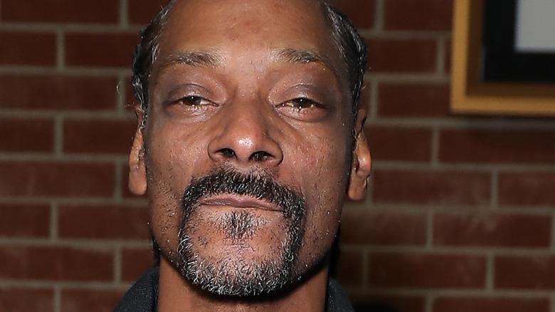 Snoop Dogg with facial hair