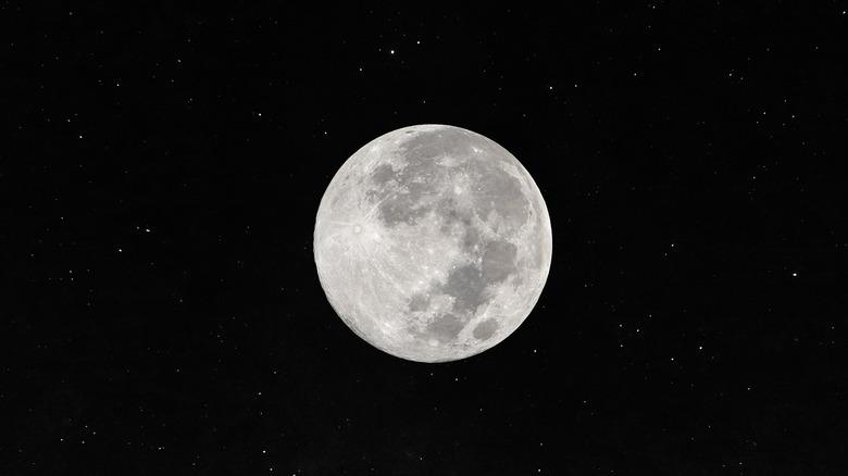 Wolf full moon against the black night sky