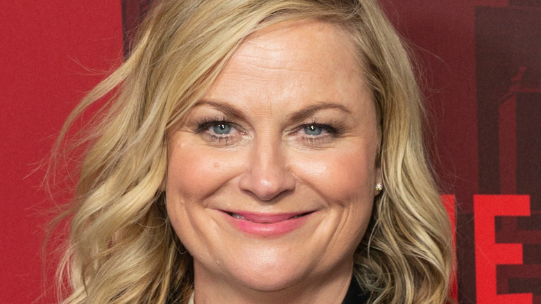 Amy Poehler poses at an event
