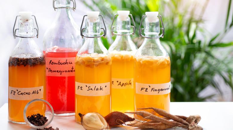 Best Kombucha Brands - Low-Sugar, Healthy Kombuchas You