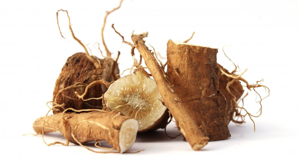 Chicory root in the raw