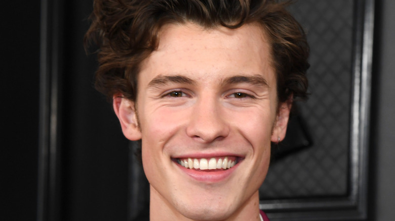 Shawn Mendes in the red carpet