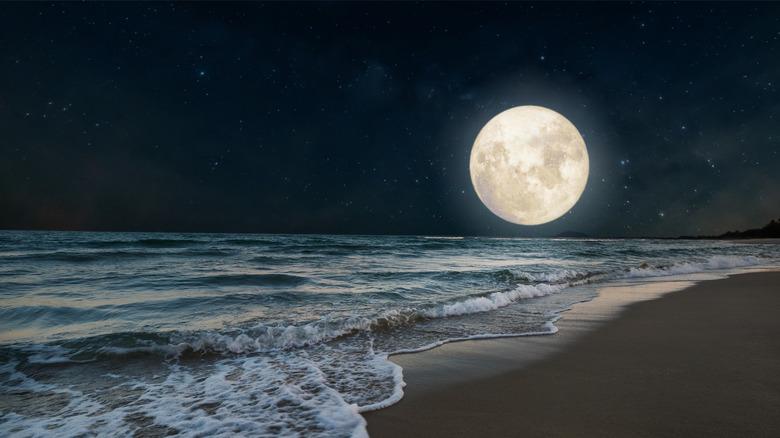 A full moon over a beach.