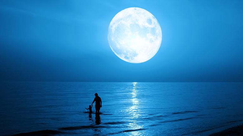 Full moon in sky above water