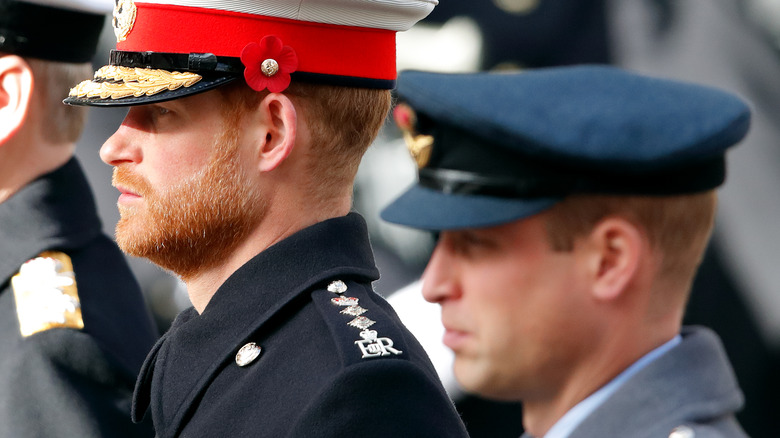 Prince Harry and Prince William in profile