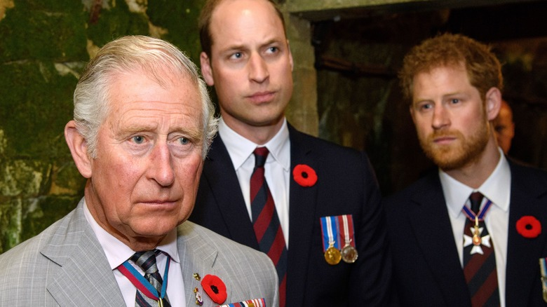 Princes Charles, William, and Harry