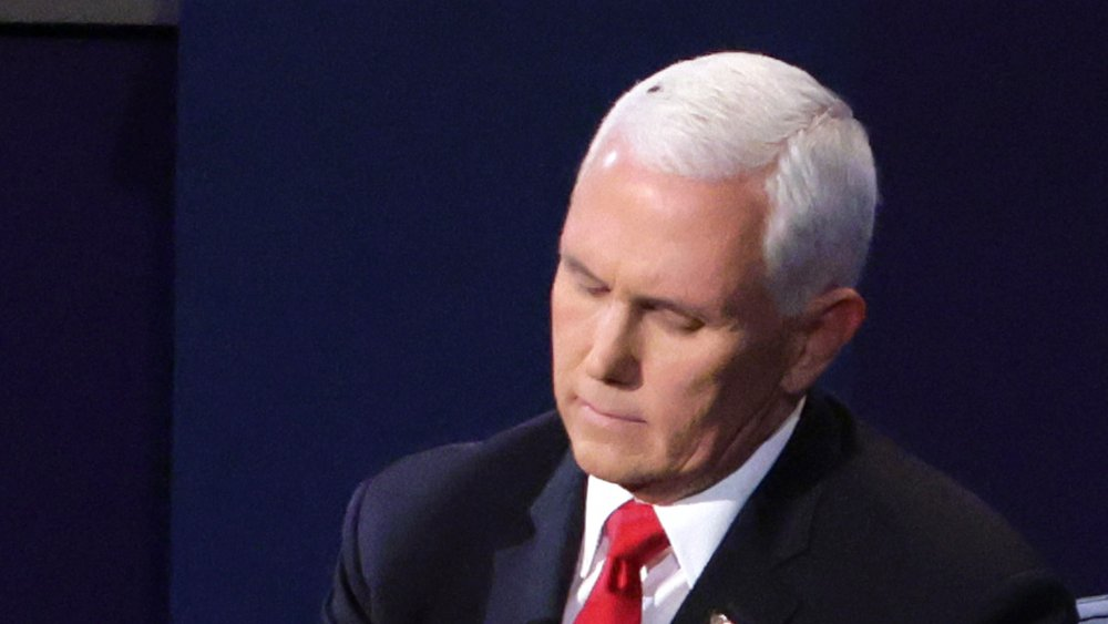 Mike Pence at debate with fly on his head