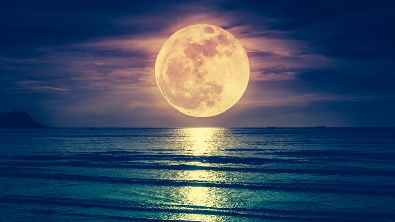 A full moon rises over the ocean