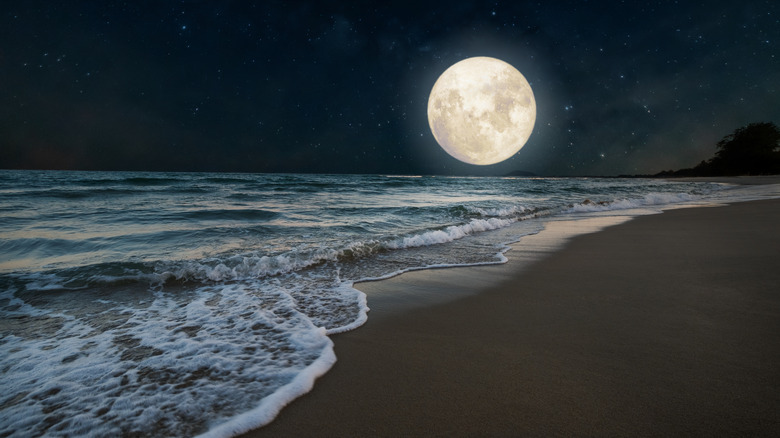 The full moon rising over the beach