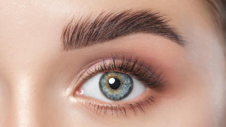 blue eyes long eyelashes