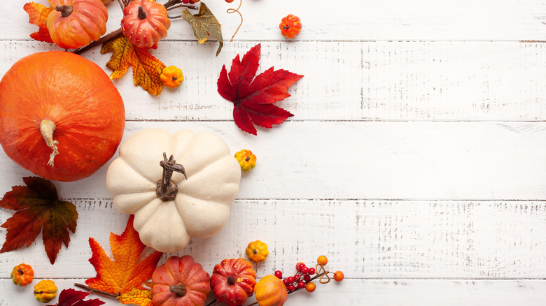 Mini pumpkins and fall leaves