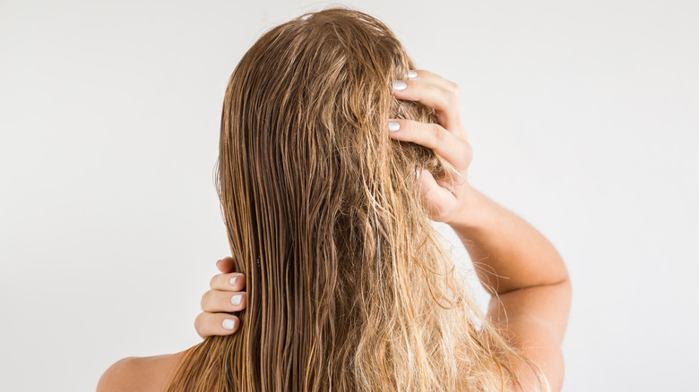 Back view of woman with wet hair