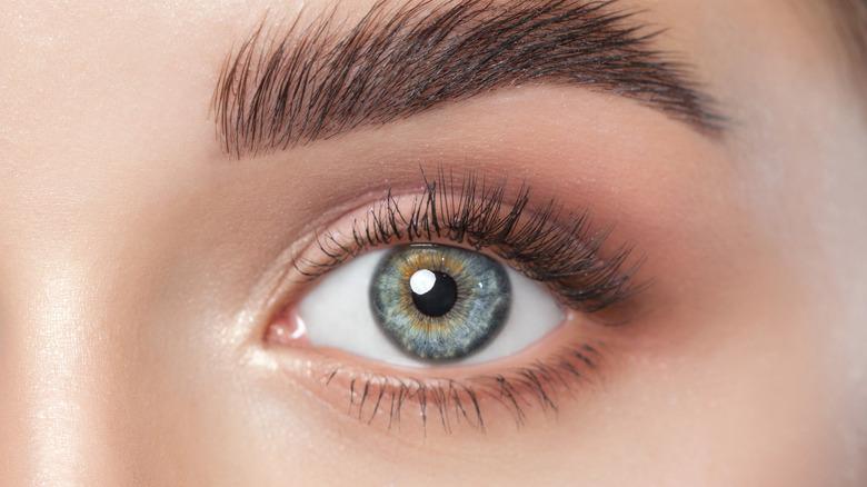 Close-up shot of a woman's eye