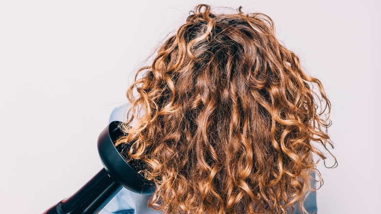 Diffuser on curly hair