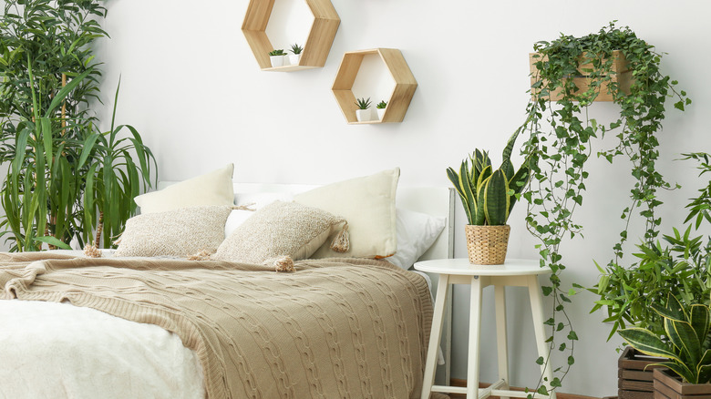 Neutral-colored bedroom with several plants.