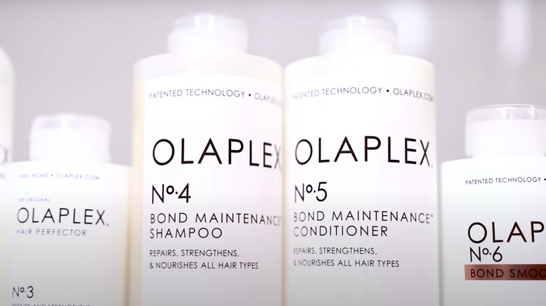 Olaplex products lined up