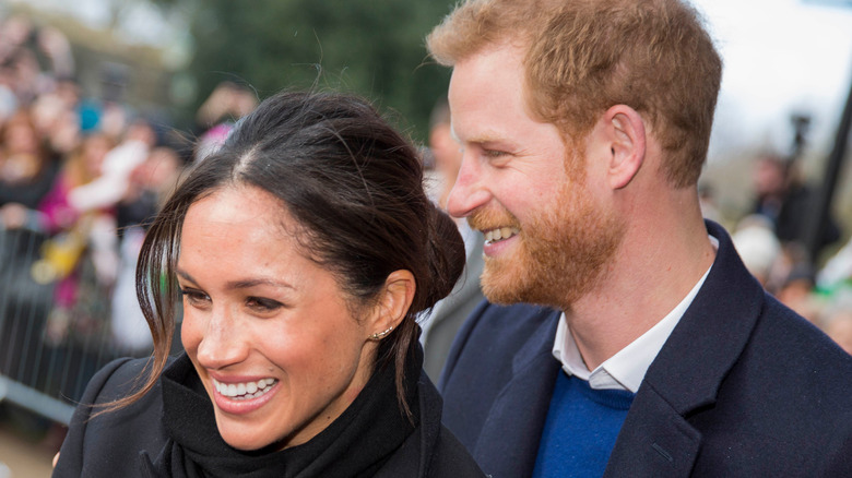 Harry and Meghan Markle greet fans in Cardiff