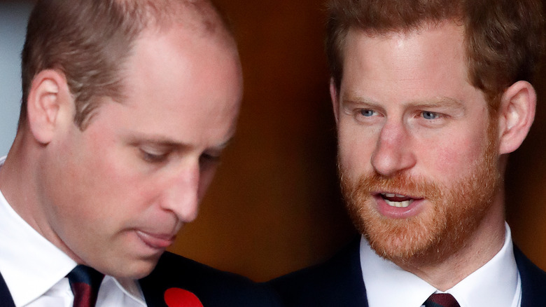 Prince William and Prince Harry at an event.