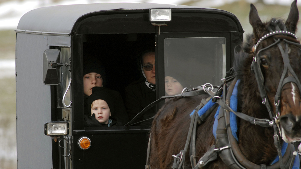 Amish family in a horse drawn cart
