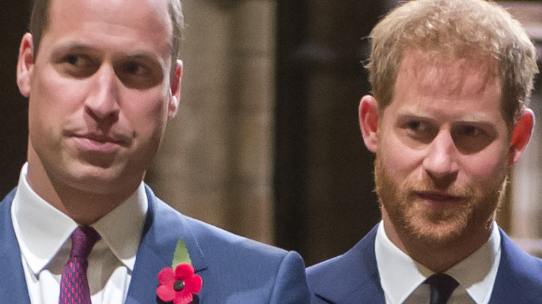 Princes William and Harry at event