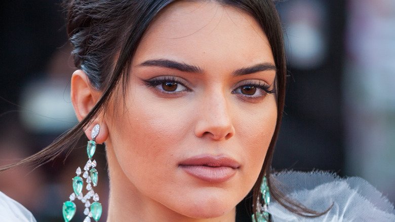 Kendall Jenner poses at the red carpet