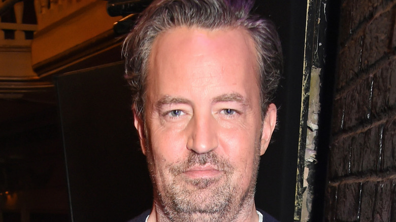 Matthew Perry poses for the camera.