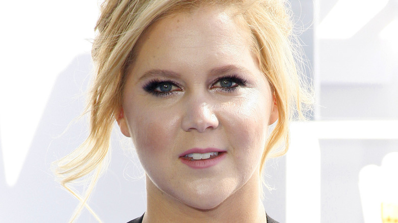 Amy Schumer posing, hair up