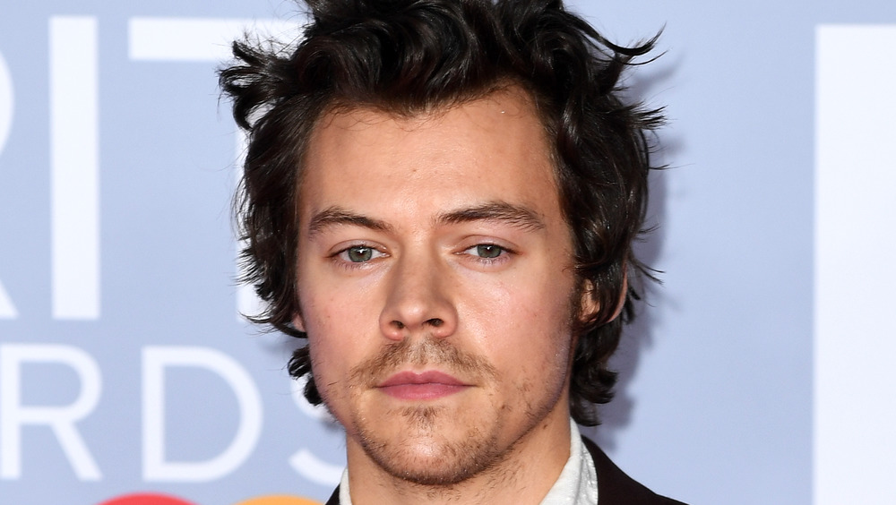 Harry Styles posing