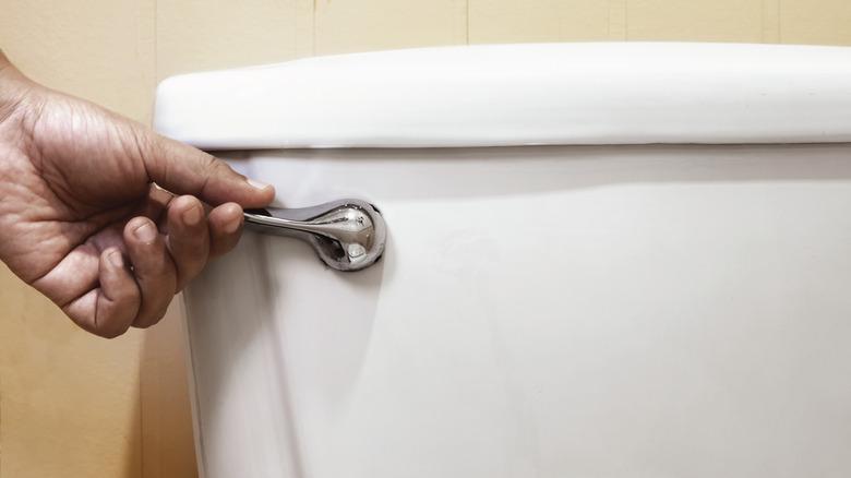 Hand flushing toilet