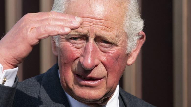 Prince Charles shading his eyes