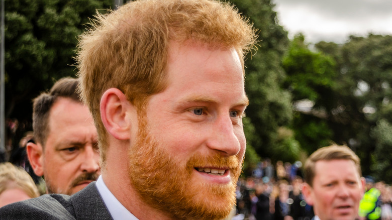 Prince Harry with crowds