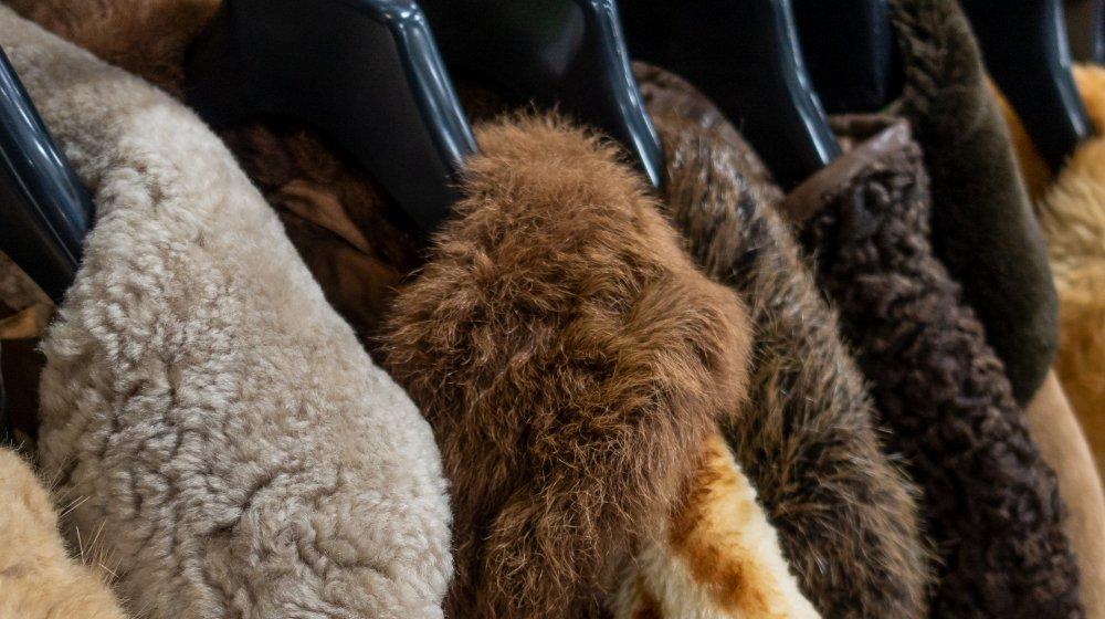 Thrift coats