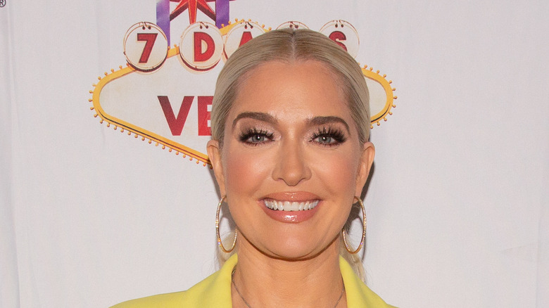 Real Housewives of Beverly Hills star Erika Jayne