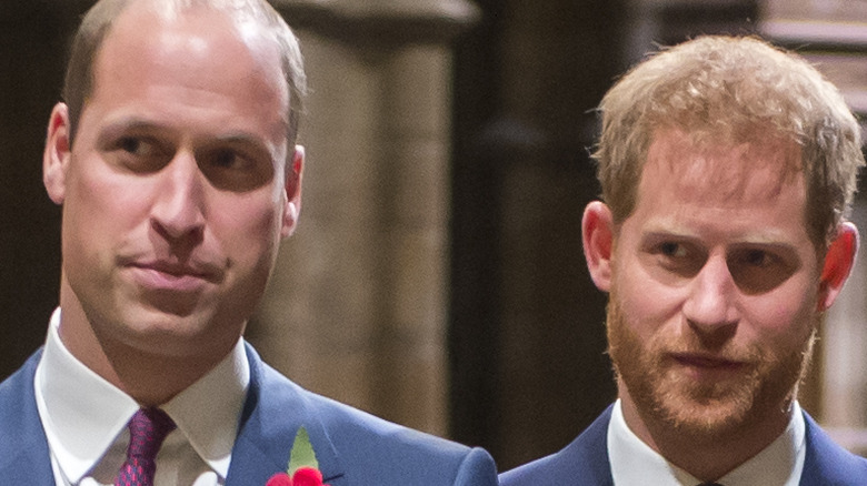 Prince William and brother Prince Harry.